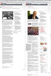 Stern Artikel
