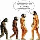 Die Umerziehung Deutschlands in West undOst