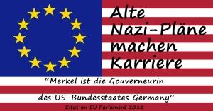 EUSA_flagge